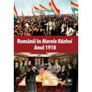 "Romanii in ""Marele Razboi"". Anul 1918: documente, impresii, marturii - Mihail E. Ionescu"