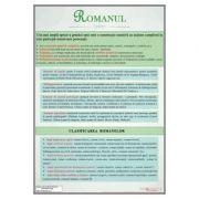 Romanul. Clasificare - Plansa, 700x1000mm (LR40)