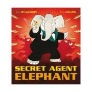 Secret Agent Elephant - Eoin McLaughlin