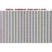 Tabelul numerelor prime pana la 6070 (MP28)