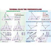 Teorema celor trei perpendiculare/ Sfera circumscrisa corpurilor de rotatie - Plansa dubla (MP19)