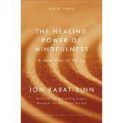 The Healing Power of Mindfulness: A New Way of Being - Jon Kabat-Zinn