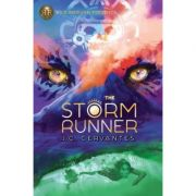 The Storm Runner - J. C. Cervantes