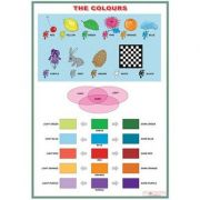 The colours/Jobs (DUO) - Plansa viu colorata, cu 2 teme distincte