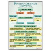 Tipuri de comunicare lingvistica - Plansa, 700x1000mm, cu sipci (LR26)