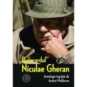 """Bulevardul"" Niculae Gheran - Andrei Moldovan"