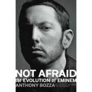Rhyme and Reason: The Evolution of Eminem - Anthony Bozza