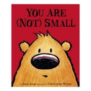 You Are Not Small - Chris Weyant, Anna Kang