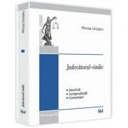 Judecatorul-sindic - Mircea Grosaru