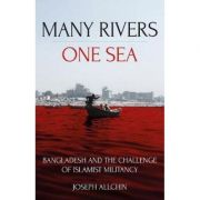 Many Rivers, One Sea - Joseph Allchin