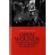 Open Wounds - Vicken Cheterian