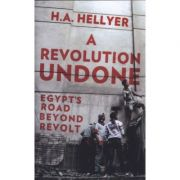 Revolution Undone - HA Hellyer