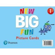 Big Fun Refresh Level 1 Picture Cards