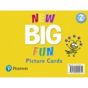 Big Fun Refresh Level 2 Picture Cards