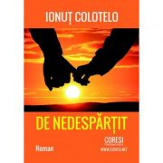De nedespartit - Ionut Colotelo