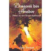 Dragonii din Anador. Seria Urmasul Pandemoniului. Vol. 1 - Lisa Darlent
