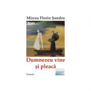 Dumnezeu vine si pleaca - Mircea Florin Sandru