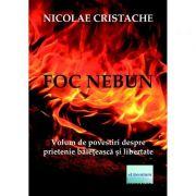 Foc nebun - Nicolae Cristache