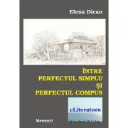 Intre perfectul simplu si perfectul compus - Elena Dican