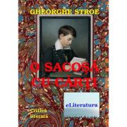 O sacosa cu carti - Gheorghe Stroe