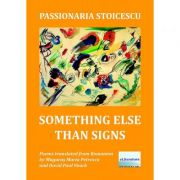 Something Else Than Signs - Passionaria Stoicescu