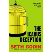 The Icarus Deception - Seth Godin