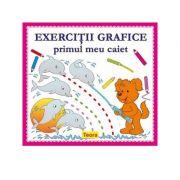 Exercitii grafice. Primul meu caiet - Diana Rotaru