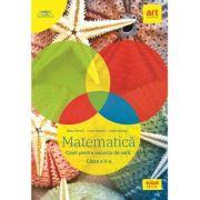 Matematica. Caiet pentru vacanta de vara. Clasa a V-a - Marius Perianu, Lucian Petrescu, Catalin Miinescu