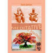 Meditative - Radu Serban