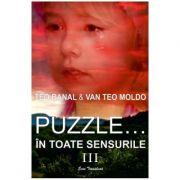 Puzzle... in toate sensurile Vol. 3 - Teo Banal, Van Teo Moldo