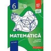 Matematica. Algebra, geometrie. Caiet de lucru. Clasa a VI-a. Initiere. Partea I - Ion Tudor