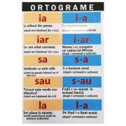Plansa: Ortograme