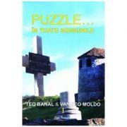 Puzzle... In toate sensurile vol. 1 - Teo Banal, Van Teo Moldo