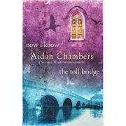 Now I Know & The Toll Bridge - Aidan Chambers