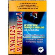 Analiza Matematica, Probleme pregatitoare pentru examenul de bacalaureat - Catalin Petru Nicolescu