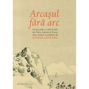 Arcasul fara arc - Stefan Liiceanu
