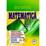 Culegere de exercitii. Matematica, Clasa a IX-a. Sinteze si teorie. Algebra, Geometrie-Trigonometrie - Catalin Petru Nicolescu