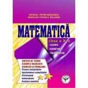 Culegere de exercitii. Matematica, Clasa a X-a. Sinteze si teorie. Algebra, Geometrie-Trigonometrie - Catalin Petru Nicolescu
