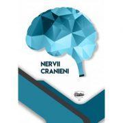 Nervii cranieni - Sarig Norbert-Attila, Ghizdavat Alexandru