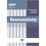 Neuroanatomy - Ioan Alin Nechifor-Boila
