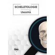 Scheletologie umana - Sarig Norbert-Attila, Ghizdavat Alexandru