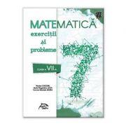 Matematica 2020 - Exercitii si probleme - clasa a VII-a - conform cu noua programa - valabil pentru oricare dintre manualele aprobate de MEN