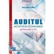 Auditul activitatii economice. Performanta si risc - Doina Maria Tilea