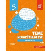 Matematica. Teme recapitulative. Clasa a V-a - Anton Negrila, Maria Negrila