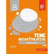 Matematica. Teme recapitulative. Clasa a VIII-a - Anton Negrila, Maria Negrila