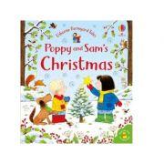 Poppy and Sam's Christmas (boardbook) - Sam Taplin