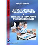 Situatii statistice financiar-contabile si sisteme de indicatori statistici derivati - Gheorghe Savoiu