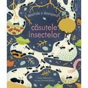 Casutele insectelor (Usborne) - Usborne Books
