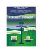 Contabilitate aprofundata - Ovidiu Bunget, Dorel Mates