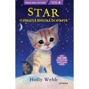 Star, o pisicuta singura in noapte - Holly Webb